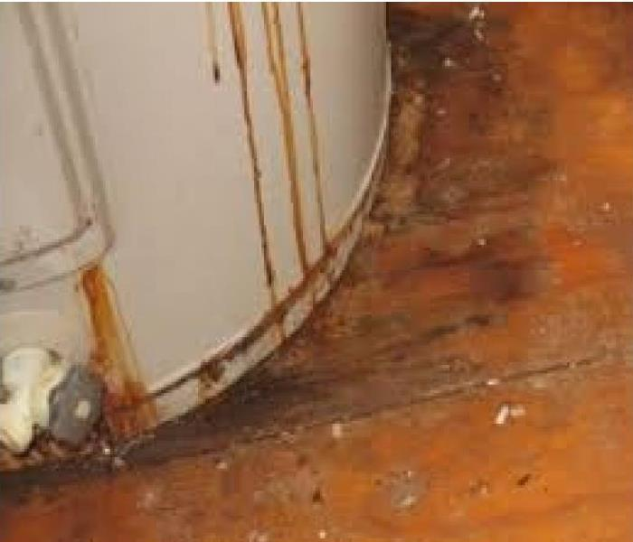 Water Damage Four Signs You Might Need A New Water Heater