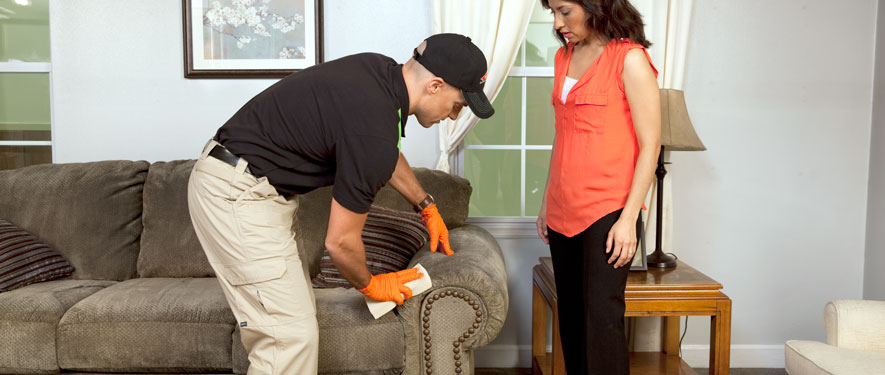 Brownsburg, IN carpet upholstery cleaning